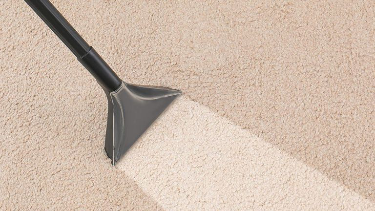5 Nasties That Lurk In Office Carpets Even If They Appear Clean
